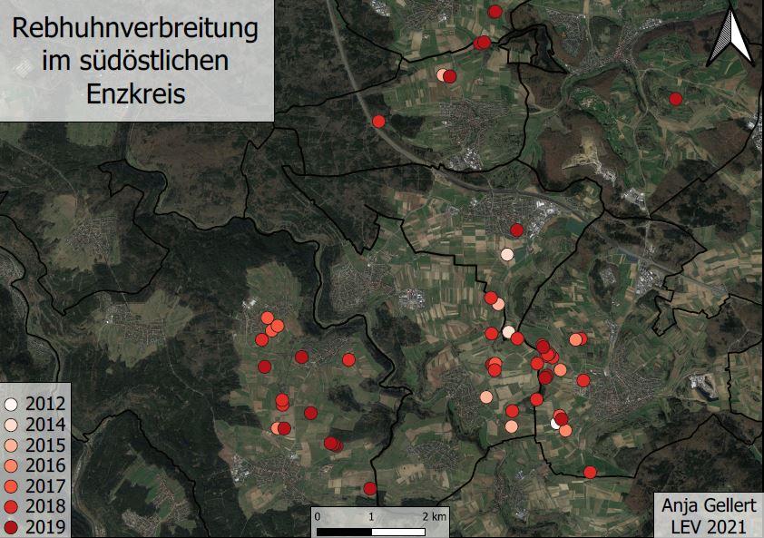 You are currently viewing Rebhuhnverbreitung im südöstlichen Enzkreis